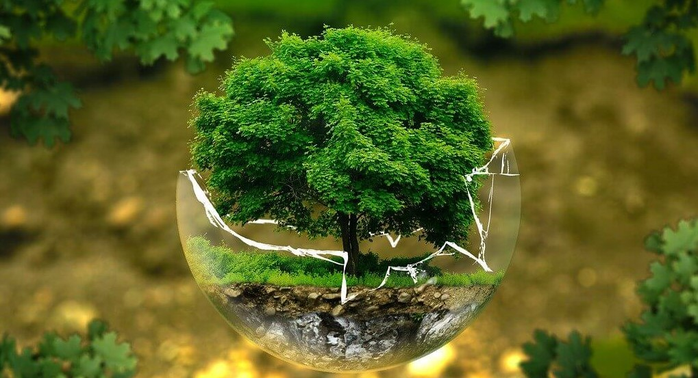 ISO 14001: 2015 Environment Management System
